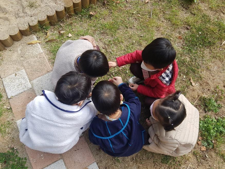 대전시  나무놀이체험으로 어린이 상상력과 꿈 키워요 (3).jpg